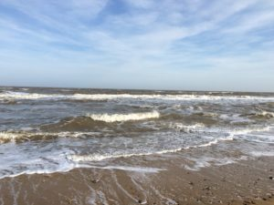Natural beauty on the Suffolk Coast and Heaths