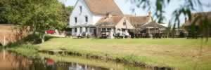 Dog friendly pubs Suffolk - The Anchor, Stoke by Nayland